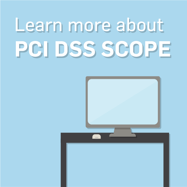 PCI DSS Supplemental Guide to Scope: Understanding PCI DSS Scope and Segmentation