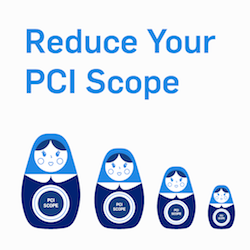 PCI Consultants Say: Reduce PCI DSS Scope