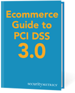 Ebook: Ecommerce Guide to PCI DSS 3.0